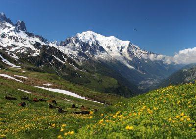 Camping Monte Bianco